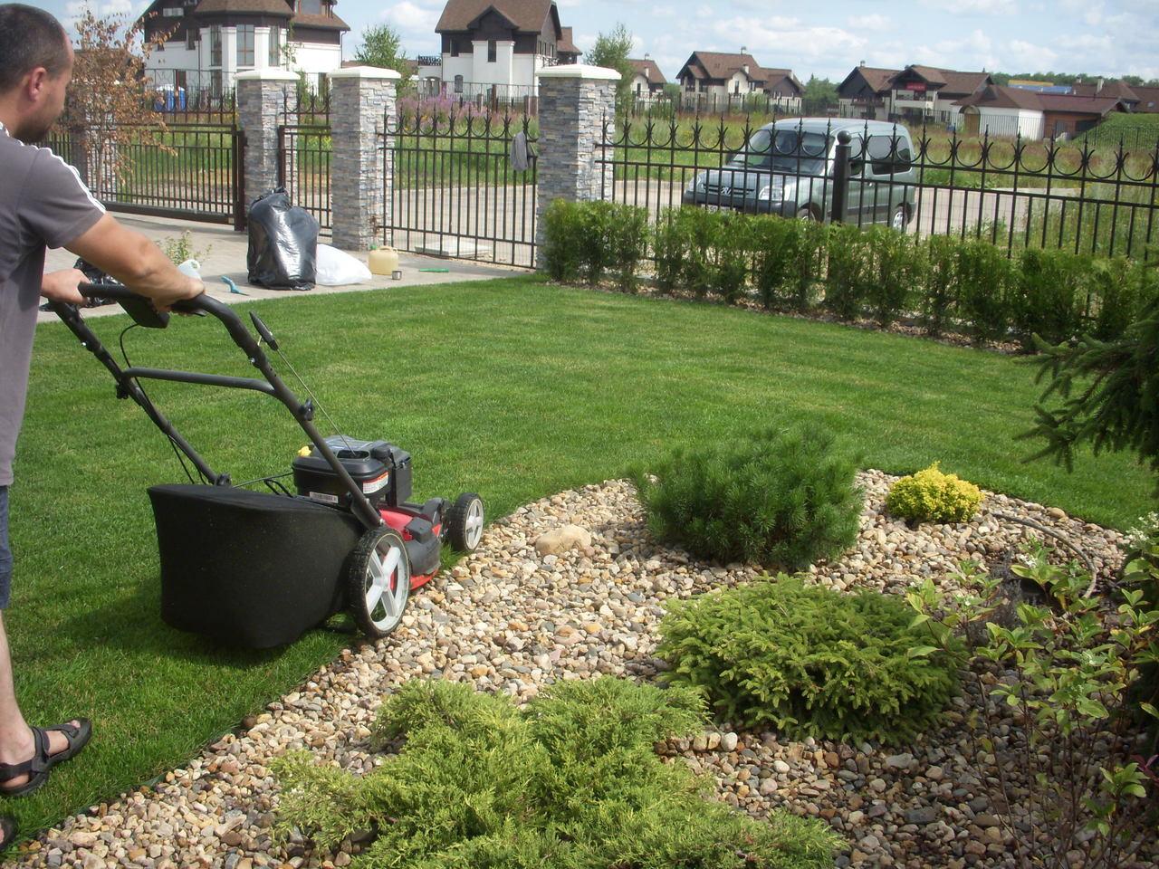 С садовником на лужайке 10 фотография